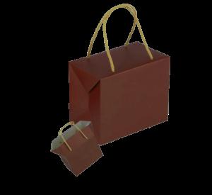 sac-papier-luxe-859406-1